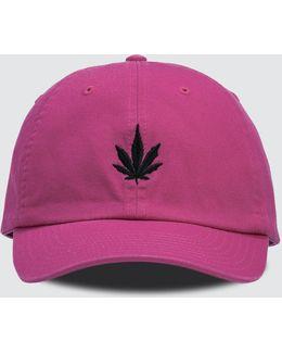 Leaf Soft Cap