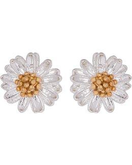 Eb974c Ladies Earrings
