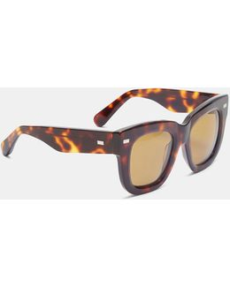 Women's Library Tortoiseshell Sunglasses In Brown