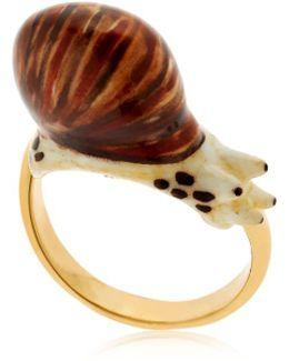 Round Snail Ring