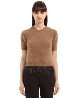 Round Neck Sweater With Feathers