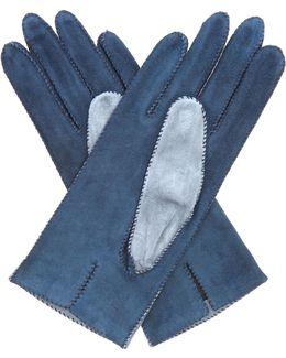 Bi-colour Suede Gloves