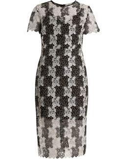 Bi-colour Lace Dress
