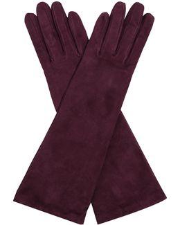 Fieno Gloves