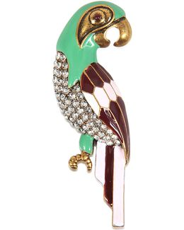 Charms Tropical Parrot Brooch