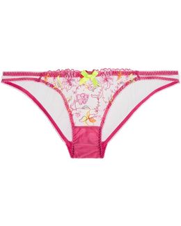 Ffion Embroidered Tulle Briefs