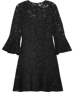 Ruffled Cotton-blend Guipure Lace Mini Dress