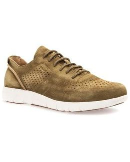Brattley 2 Perforated Sneaker