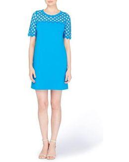 Rue Lattice Lace Shift Dress
