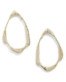 Livi Frontal Hoop Earrings