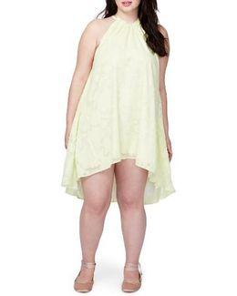 Jacqueline Burnout Swing Dress