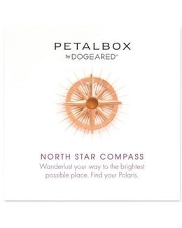 Petalbox North Star Compass Pendant Necklace (nordstrom Exclusive)