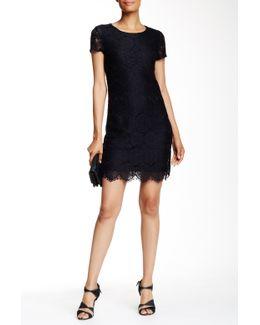 Short Sleeve Lace Shift Dress