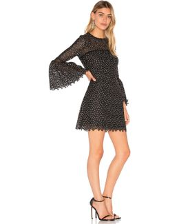 Ditzy Embroidered Dress