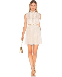 Forever Lace Crepe Babydoll Dress