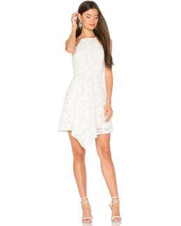 Plain Sight Mini Dress