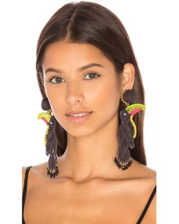 Tucan Earrings