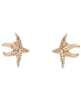 Sea Star Gold Tone Earrings
