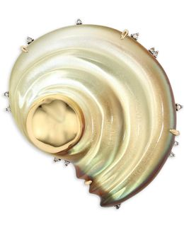 Lucite Sculptural Shell Pin