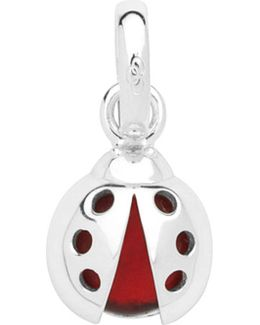 Lucky Ladybird Sterling Silver Charm