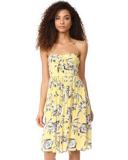 Joss Printed Midi Dress