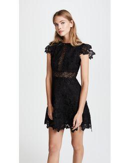 Calvin Scalloped Lace Dress