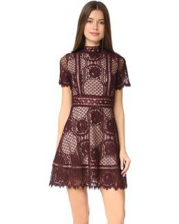 Aria Lace Short Sleeve Dress