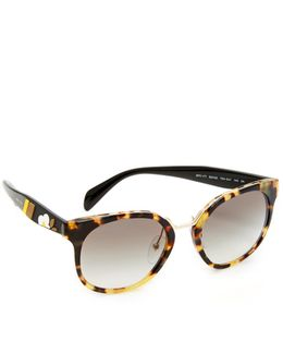 Crazy Daisies Sunglasses