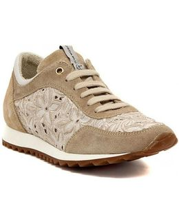 Herse Sabbia Women's Shoes (trainers) In Multicolour