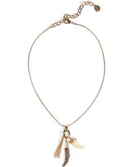 Vergoldete Halskette Mit Haifischzahn