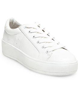 Bertie Sneakers