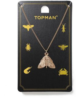 Gold Moth Necklace