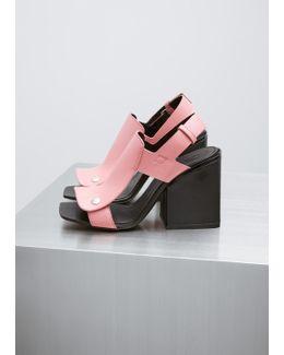 Camellia / Black Sandal Shoe