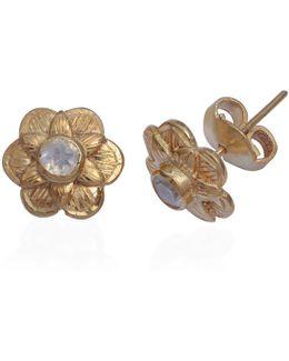 Gypsy Rose Moonstone Stud Earrings