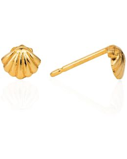 Shell Stud Earrings Gold Vermeil