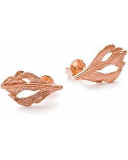 I Can Fly Baby Swan Feather Stud Earnings In Rose Gold