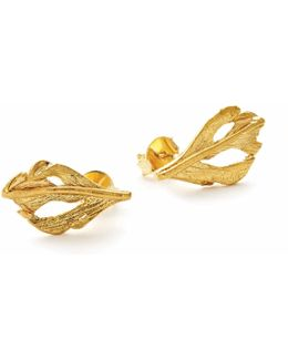 I Can Fly Baby Swan Feather Stud Earrings Gold