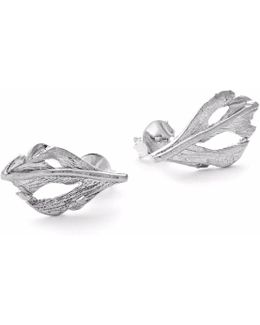 I Can Fly Baby Swan Feather Stud Earrings In Silver