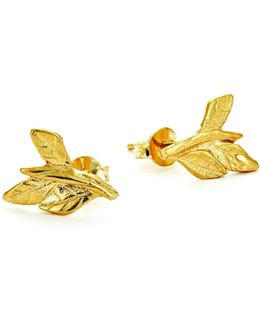 Wrap Your Laurels Around Me Stud Earrings In Gold
