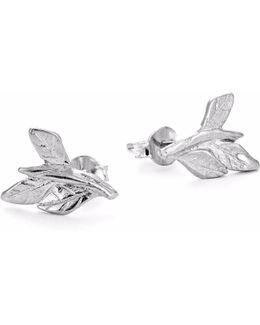 Wrap Your Laurels Around Me Stud Earrings In Silver