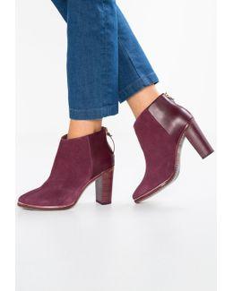 Azaila High Heeled Ankle Boots