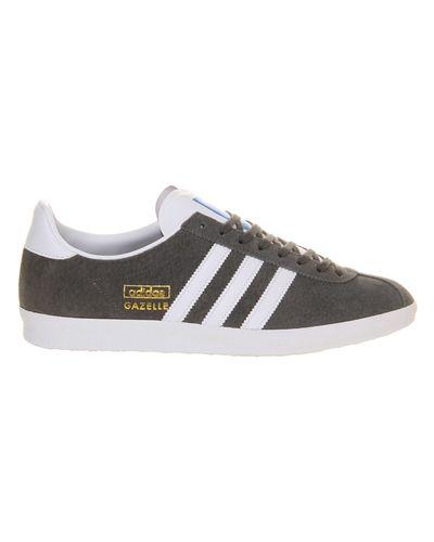 adidas Originals Suede Gazelle Og Trainers S74846 in Grey (Gray ...