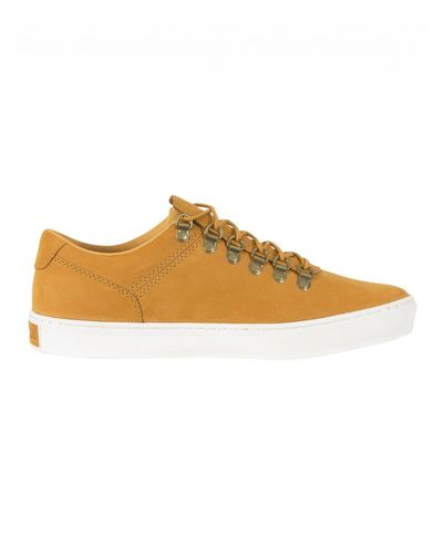 timberland adventure 2.0 cupsole alpine oxford sneakers basses homme