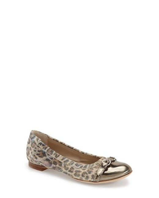 Agl Leopard Print Leather Ballet Flats In Animal Ginger