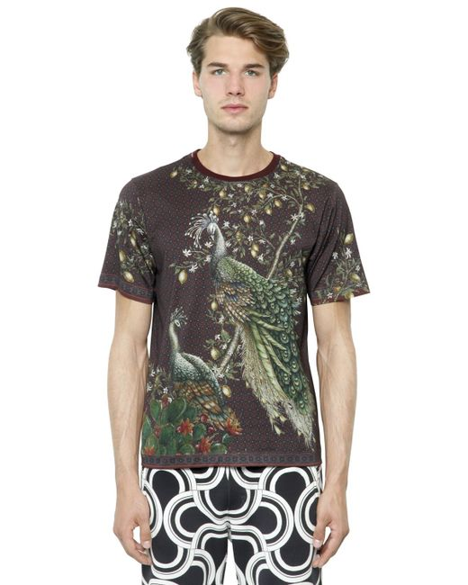 Dolce gabbana peacock printed cotton jersey t shirt in for Dolce and gabbana printed t shirts