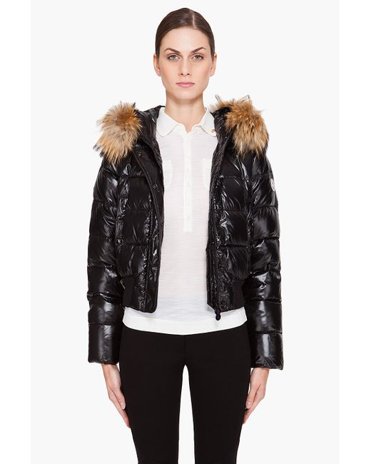 moncler quilted dogs jacket
