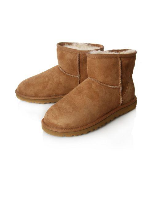 chestnut ugg boots for sale