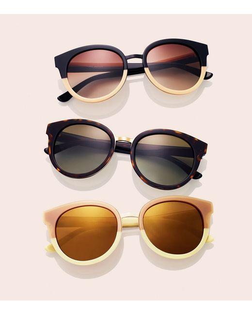 Tory Burch | Black Panama Sunglasses | Lyst