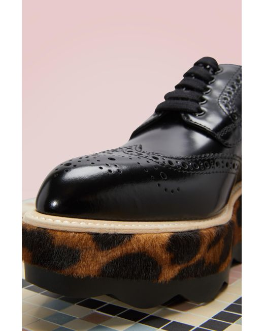 Leopard Sole Wingtips Prada tTxQrJXoq