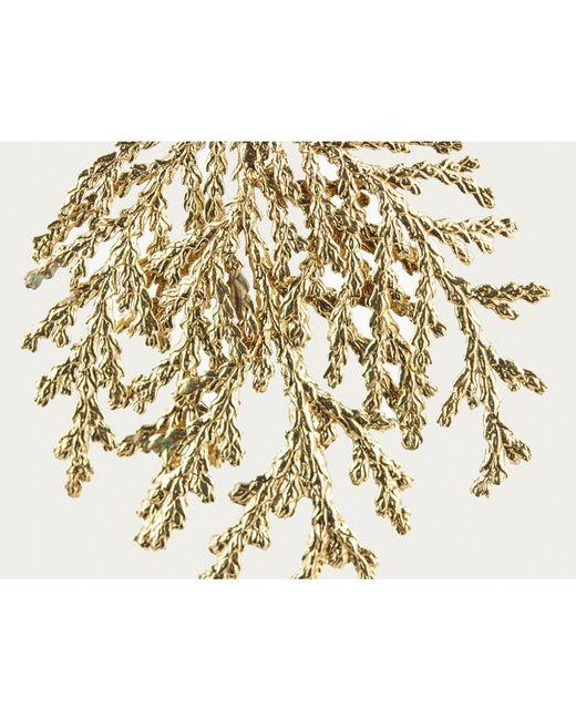 Mor | Metallic Bronze Coral Earrings | Lyst